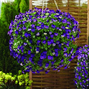 Large Spring Baskets